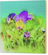 Small Group Of Violets Wood Print