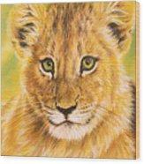 Small Lion Wood Print