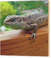 Small Lizard Wood Print