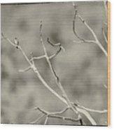 Small Lonesome Bird Wood Print
