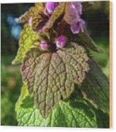 Small Mauve Flowers 7 Wood Print