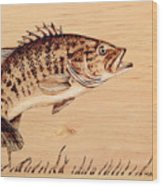 Small Mouth Bass Wood Print