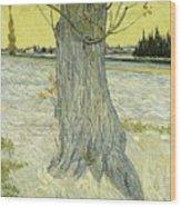 Small Pear Tree In Blossom Arles, April 1888 Vincent Van Gogh 1853  1890 Wood Print