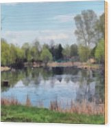 Small Pond In Tomilino Wood Print