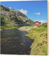 Small Red Cabin In Norway Wood Print