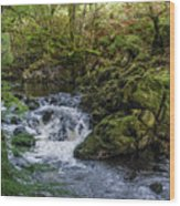 Small River Cascade Over Mossy Rocks In Northern Wales Wood Print