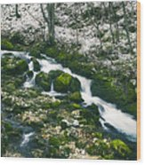 Small River In Forest In Winter Wood Print