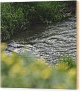 Small River With Shore Grass Wood Print