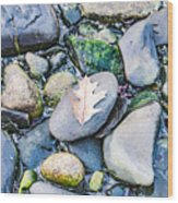 Small Rocks On The Beach Wood Print