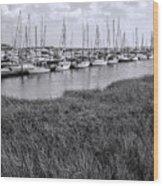 Small Sailboat Harbor Monochrome  Wood Print