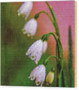 Small Signs Of Spring Wood Print