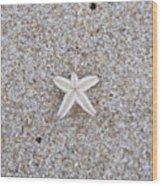 Small Star Fish Wood Print