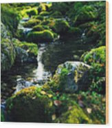 Small Stream In Green Forest Lapland Wood Print
