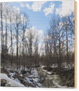 Small Stream In Spring Wood Print
