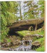 Small Waterfall 2 Wood Print