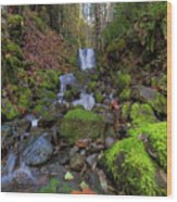 Small Waterfall At Lower Lewis River Falls Wood Print