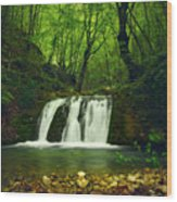 Small Waterfall In Forest Wood Print
