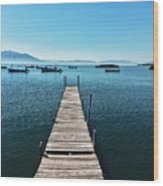 Small Wood Pier Wood Print