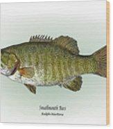Smallmouth Bass Wood Print by Ralph Martens