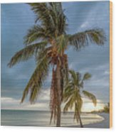 Smathers Beach Coconut Sunset Wood Print