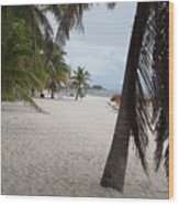 Smathers Beach - Key West Wood Print