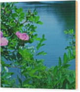 Smell The Roses Wood Print