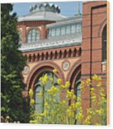 Smithsonian Bloom Wood Print