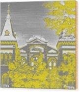 Smithsonian Chrome Wood Print