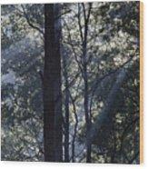 Smoke In The Air Wood Print
