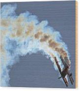 Smokey Biplane Wood Print
