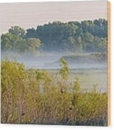 Smokey Marshland Wood Print