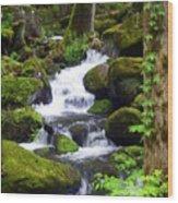 Smokey Mountain Stream Wood Print