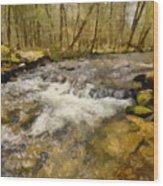 Smokey Mt. Stream Wood Print by Paul Bartoszek