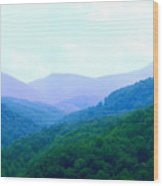 Smokies In Spring Wood Print