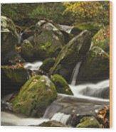 Smokies Waterfall Wood Print