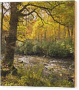 Smoky Autumn Wood Print