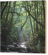 Smoky Wood Print
