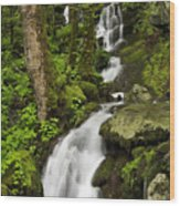 Smoky Mountain Cascade - D002388 Wood Print