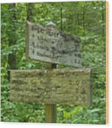 Smoky Mountain Directional Wood Print