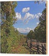 Smoky Mountain Scenery 12 Wood Print
