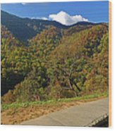 Smoky Mountain Scenery 8 Wood Print