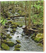 Smoky Mountain Stream 1 Wood Print