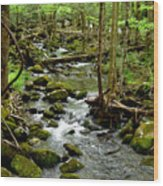 Smoky Mountain Stream 2 Wood Print