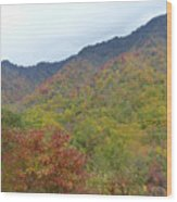 Smoky Mountains National Park 4 Wood Print
