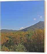Smoky Mountains Scenery 9 Wood Print
