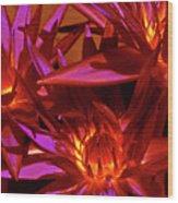 Smoldering Lilies Wood Print