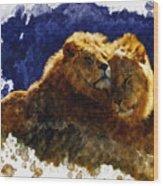 Smooching Lions Wood Print