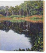 Smooth Landing Wood Print