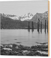 Smooth Seward Alaska Grayscale Wood Print