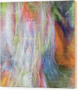 Smudge 213 Wood Print